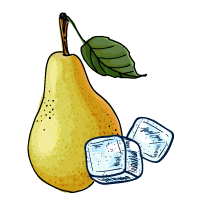 Pear and Ice sketch