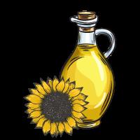 Sunflower OIl Sketch