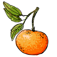 Tangerine sketch