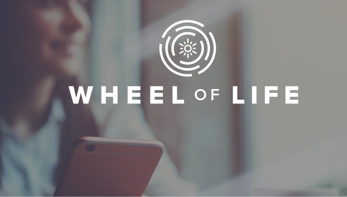 Tony Robbins Wheel Of Life