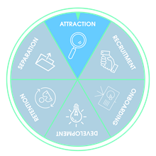 attraction-employee-lifecycle