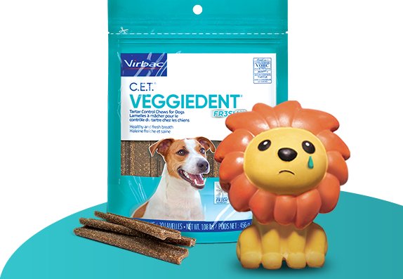 Photo of packaging for C.E.T.® VEGGIEDENT® FR3SH® Dental Chews for Dogs, with a sad-looking lion toy in front to show just how bad a dog's breath can be