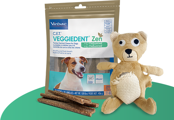 Photo of packaging for C.E.T.® VEGGIEDENT® Zen Dental Chews for Dogs, with a stressed-looking bear toy in front to illustrate the combined effects of bad dog breath and stressful situations