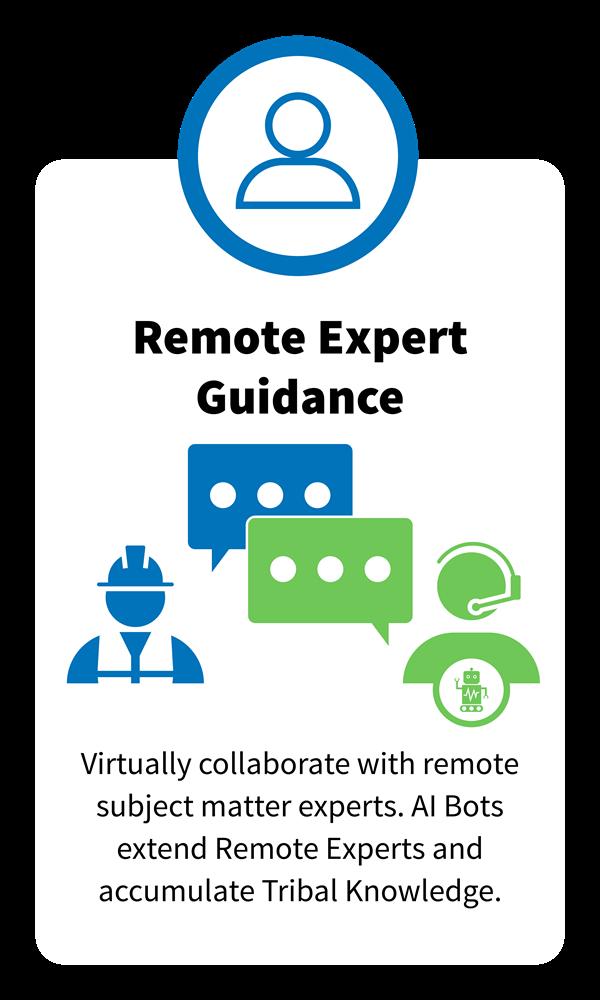 Remote Expert