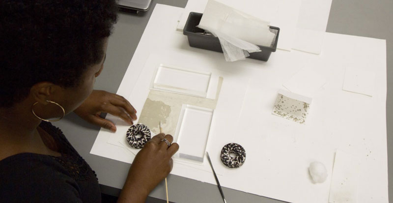Shannon Brogdon-Grantham, profiled in Smithsonian Science Stories: Art in Science