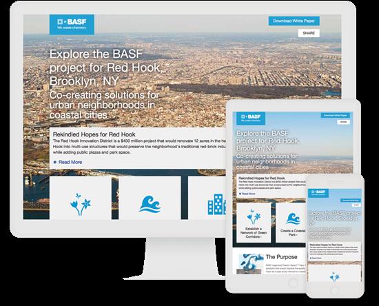 BASF Interactive White Paper