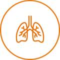 Icon illustration of lungs
