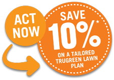 ACT NOW - SAVE 10%