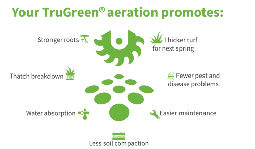 Your TruGreen aeration promotes