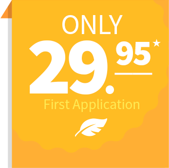 Only $29.95 First Application