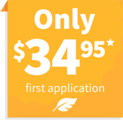 Only $34.95 first application