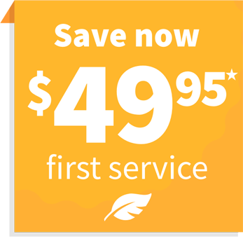 Only $49.95 First Tree & Shrub Service