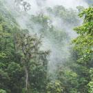 cultural travel in Costa Rica
