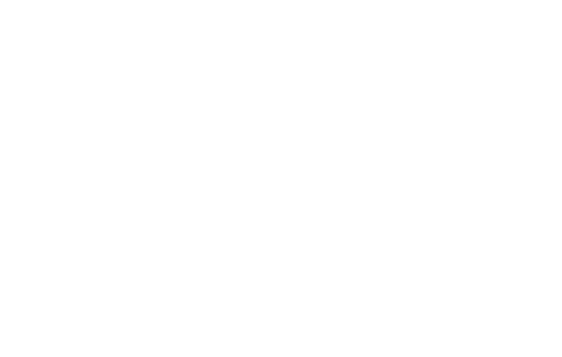 20 percent of people prefer road trips